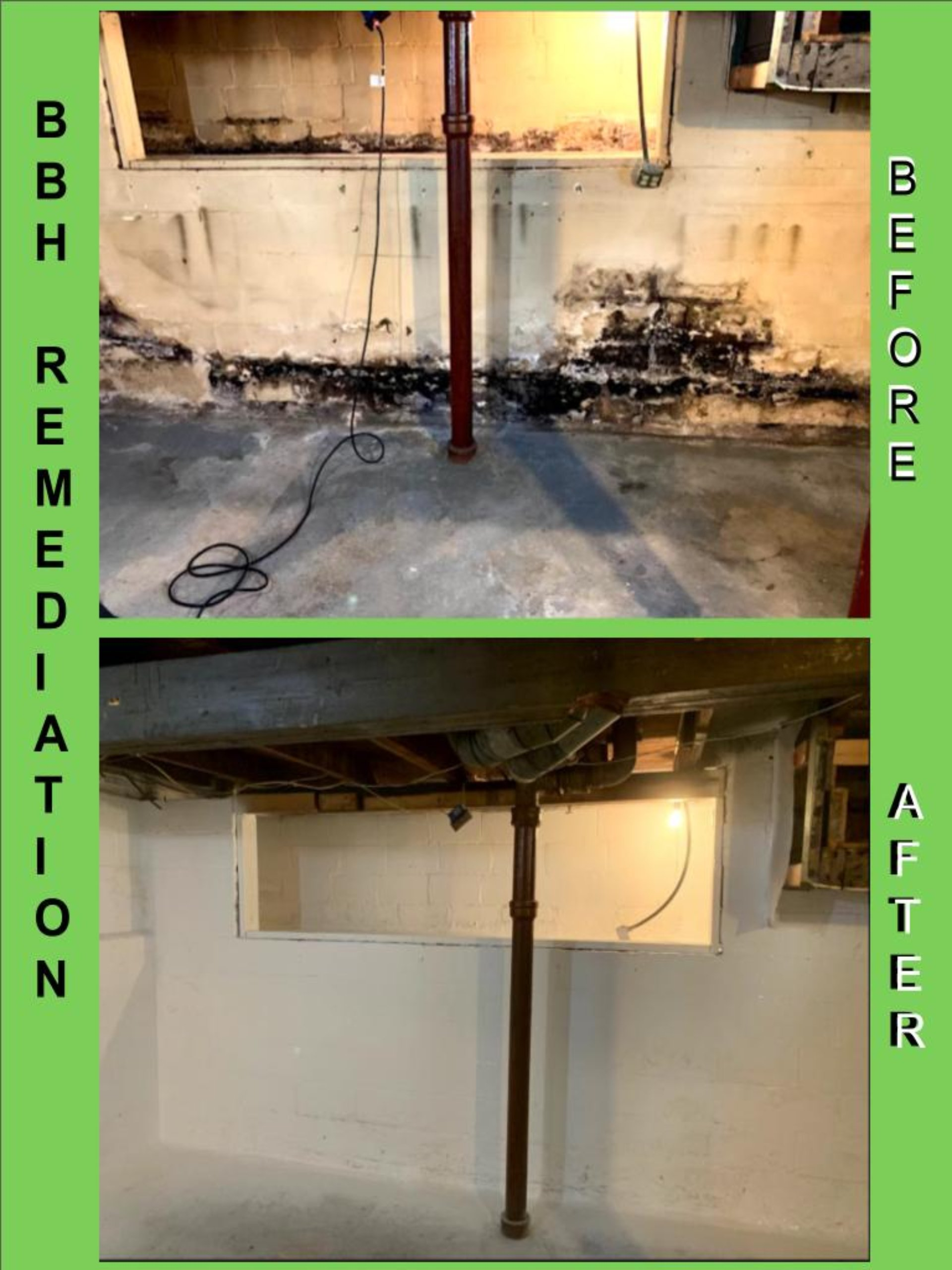 Basement Mold Removal